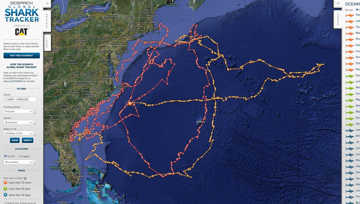 About - Ocearch