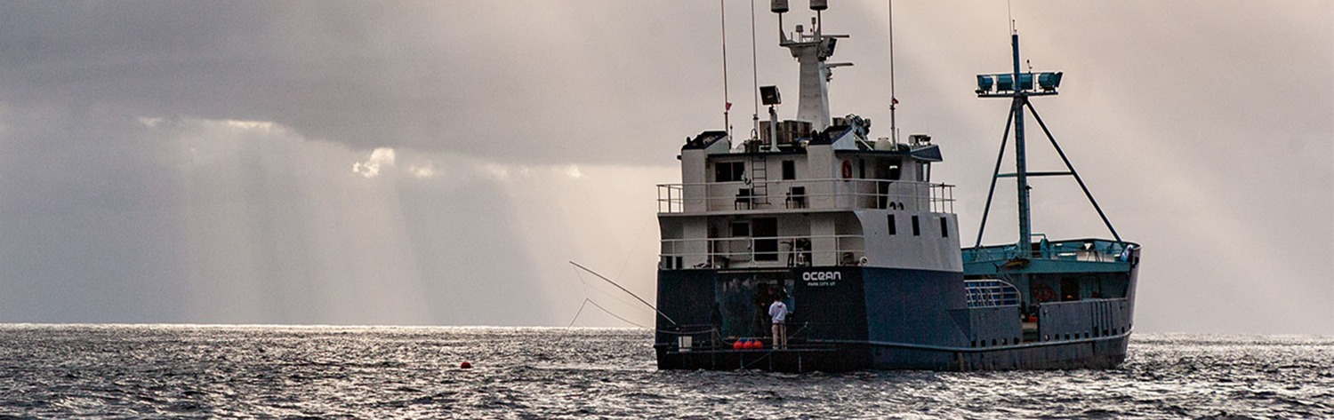 Pioneering OCEARCH Expedition to Pacific Ocean Results in Published Paper