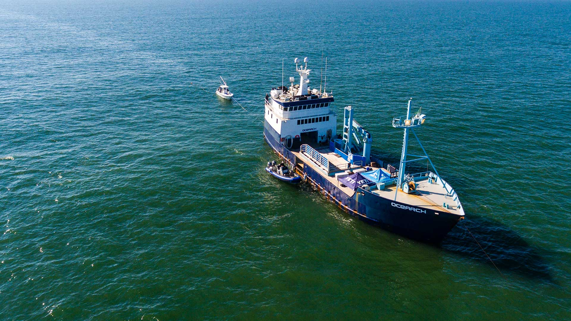Why We're Returning to the Southeast Coast for Expedition NASFA